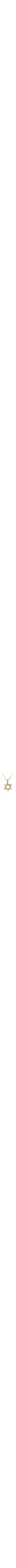 star of david pendant with diamonds