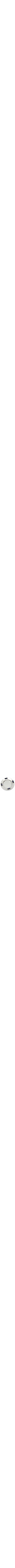 Sterling Silver plate in a modern design with inlaid semi precious stones