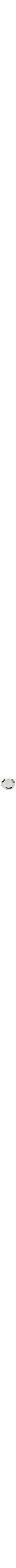 Jerusalem plate