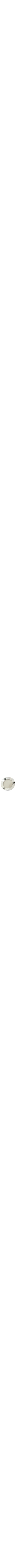Sterling silver Kiddush plate