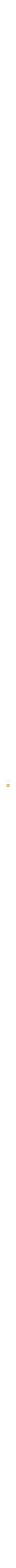 Jerusalem- Star of David Pendant- Gold