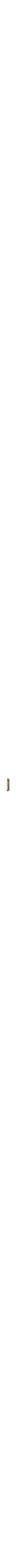 green mezuzah case with butterflies
