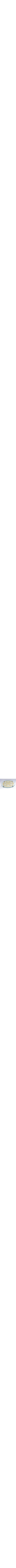 High-quality glass seder plate