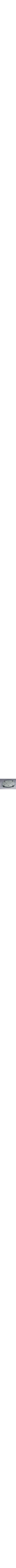 modern glass seder plate