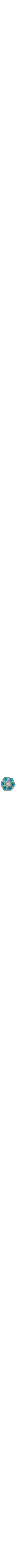 turquoise Passover plate