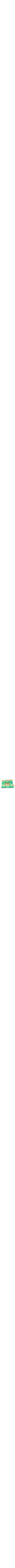 Ceramic turquoise Passover Plate