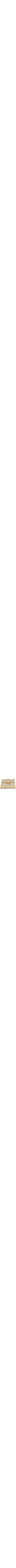 Stunning sand-tone Passover Plate