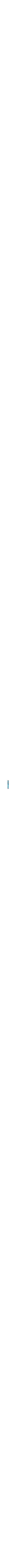 Colourful floral mezuzah
