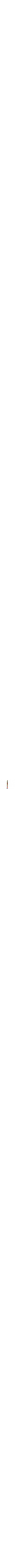 colourful mezuzah with pomegranate
