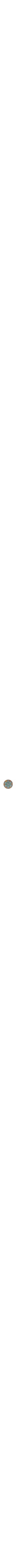 colcourful Passover Seder plate