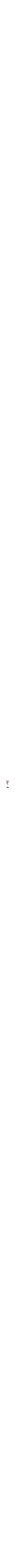 Sterling silver Kiddush goblet