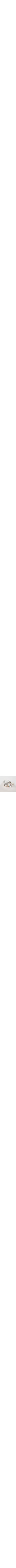 Vintage bowl Sterling silver & glass honey dish