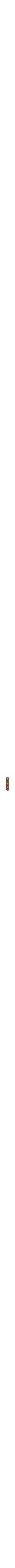 Pomegranate Mezuzah