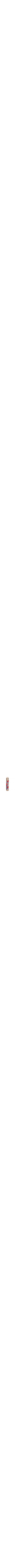Pomegranate Mezuzah5