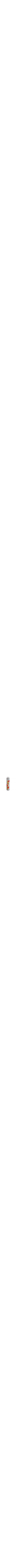 Pomegranate Mezuzah6