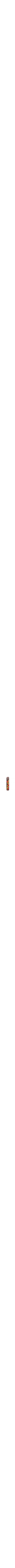 Pomegranate Mezuzah7