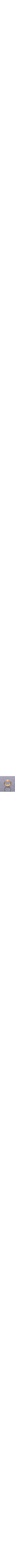 Yellow Gold 14k Wedding Band