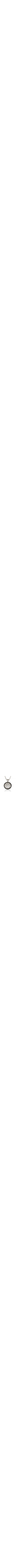 14k White Gold Black Diamond Shema Yisrael