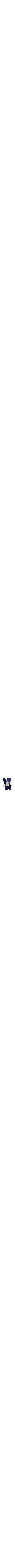 Stunning 14k White gold ring Jewish Ring Hamsa
