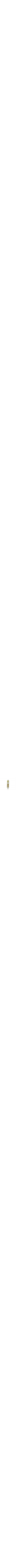 Mezuzah case Torah scroll