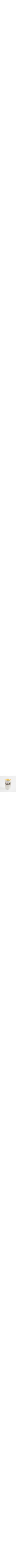 unique set kiddush Cup & Plate Sterling silver 925