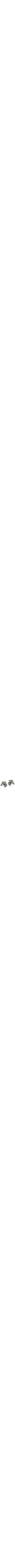 Dainty sterling silver candlesticks. Each candlestick is created out of beautiful silver, in the shape of an open nut, freshly picked with silver stems and leaves holding up the nature-inspired candlestick.
