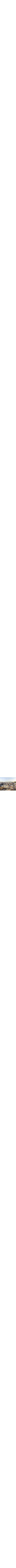 Roofs in Old Jerusalem