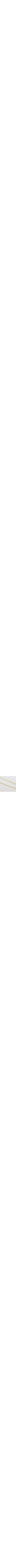 Rolo chain necklace 14k gold