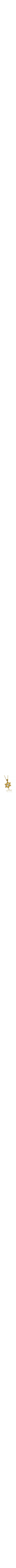 14k yellow gold Jewish Chai in Star of David Pendant